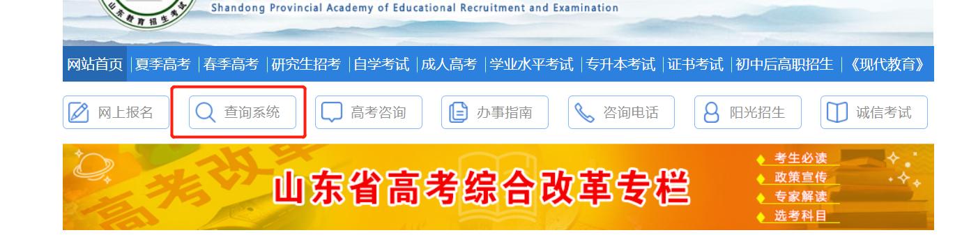 山东省教育招生考试院网站