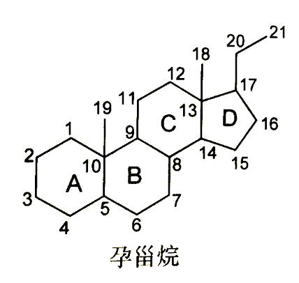 西药执业药师_3